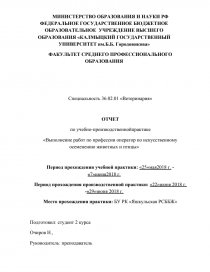 Отчет по практике цум минск 6147