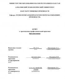 Отчет по практике алматы 8576